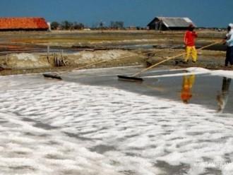 Pemprov Jateng Bangun Pabrik Garam